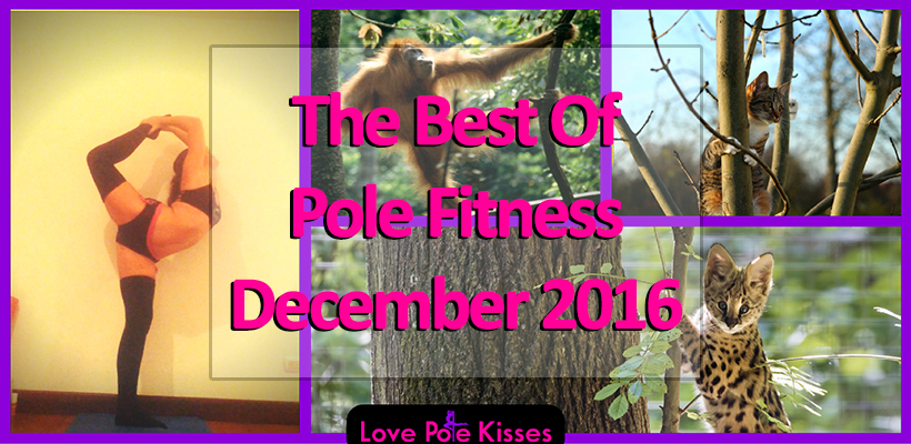 The best of pole dance & fitness December