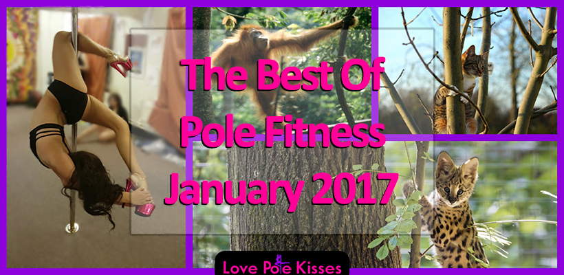 The Best Of Pole Fitness January 2017