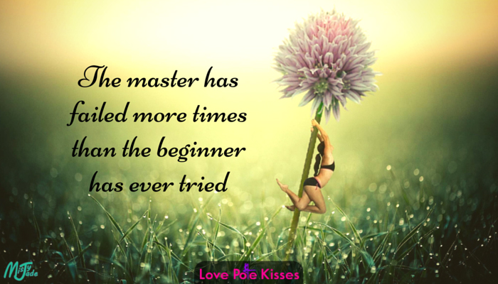 The master has failed more times than the beginner has ever tried - quote
