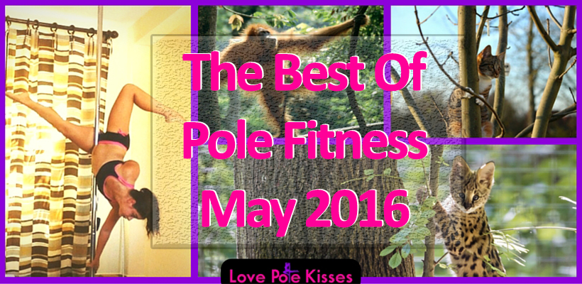 The best of pole fitness may 2016