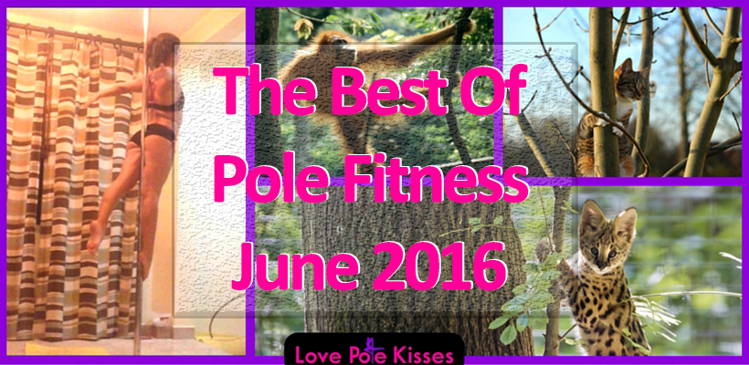 The Best of Pole Fitness June 2016