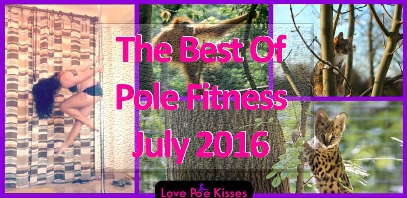 The Best Of Pole Fitness July 2016