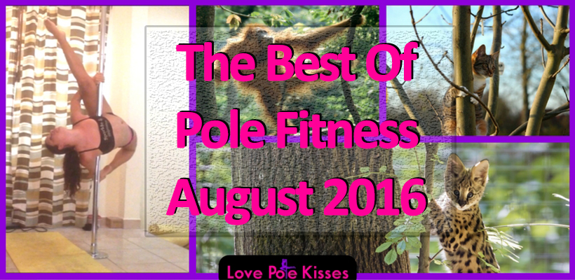 The Best Of Pole Fitness August 2016