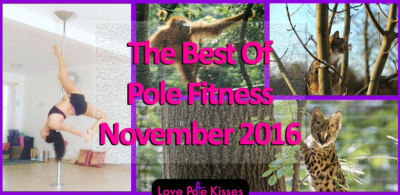 Best Of Pole Dance & Fitness, November 2016