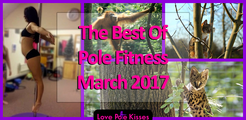 Best of Pole Dance & Fitness March 2017