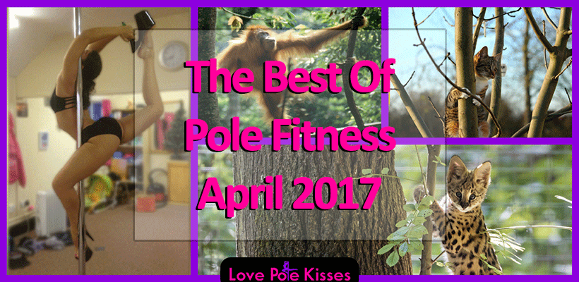 Best Of Pole Fitness April 2017
