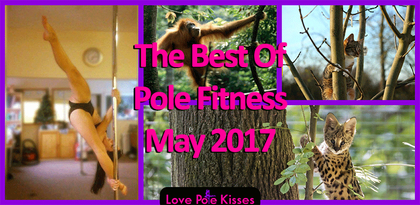 Best Of Pole Dance & Fitness May 2017