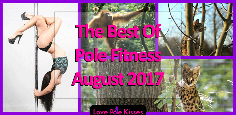 best of pole dance & fitness August 2017