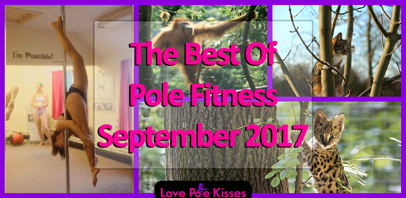 The Best Of Pole Dance & Fitness September