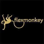 Flex Monkey Pole wear
